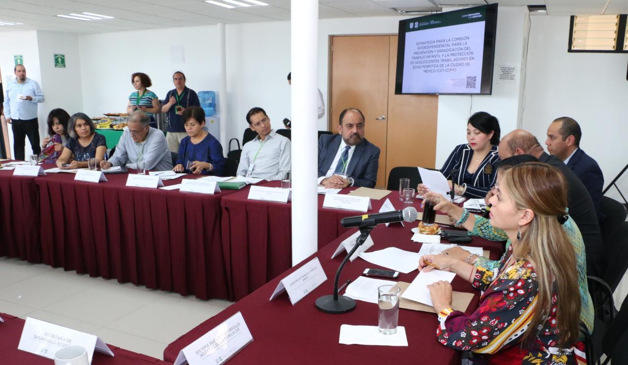 1a Sesión Orfinaria CITI-CDMX 12062019- 9.jpeg